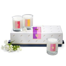 Candle Trio in Darjeeling, Frangipani, Grapefruit. Scented Candles from Aspinal of London