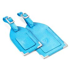 Set of 2 Luggage Tags in Aquamarine Lizard