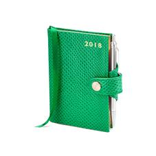 Mini Pocket Leather Diary with Pen in Grass Green Lizard