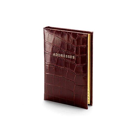 Safari Croc Mini Address Book in Amazon Brown from Aspinal of London